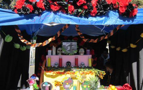 Manual Celebrates Dia De Los Muertos