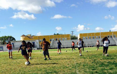 Girl's Soccer Prepares for New Season