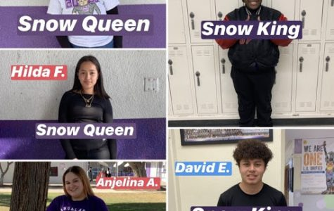 Who Will Win Winter Formal 2020?